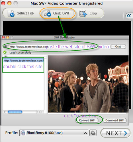 Download Quicktime Format File Extension Free Bittorrenthype